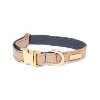 Lurril Champagne Collar from Forsyth and Tedd