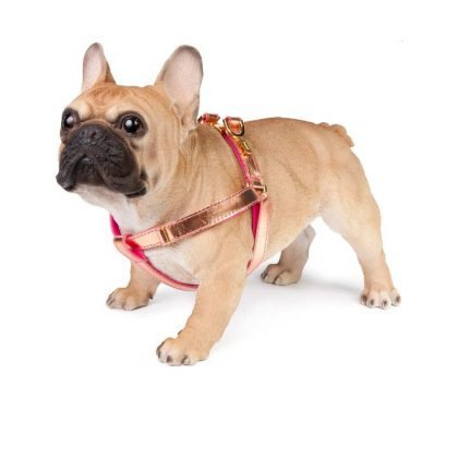 Lurril Dog Harness in Rose Gold from Forsyth and Tedd