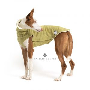 Dog Cable Knit Sweater by Forsyth And Tedd