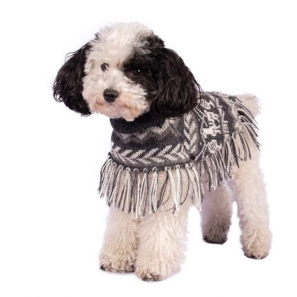 Dog Jumper by Forsyth And Tedd