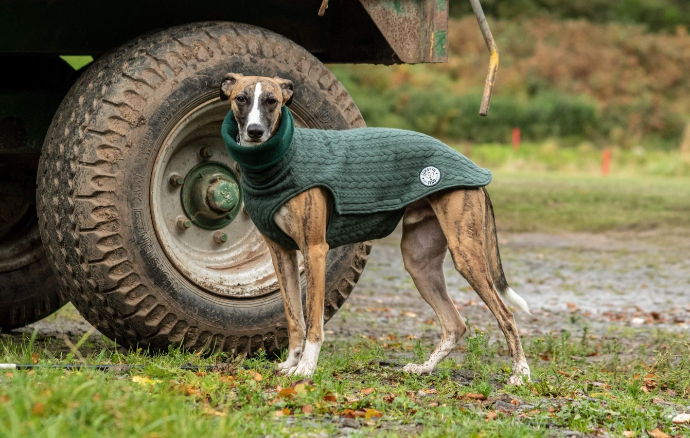 Cable Knit Dog Jumpers from Forysth and Tedd